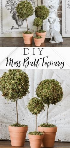 Learn how to make a mini moss ball topiary in 6 easy steps Each topiary costs about 4 and 10 minutes to make Perfect addition for your spring decor topiary diyhomedecor springdecor Spring Home Decor, Spring Crafts, Diy Home Decor, Spring Decorations, Decor Crafts, Room Decor, Diy Crafts, Vintage Farmhouse, Farmhouse Style