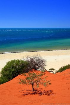 The red sand of the outback meets the sea in the Francois Peron National Park, Western Australia