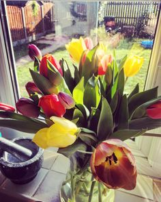 #fridayflowers #tulips #sunshine