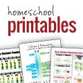 Site with many homeschool printables (calendars, planners, gradebook, subjects); articles; free homeschool curriculum resources from around the web; learn to read; homeschool 101...