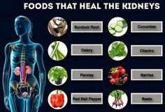 Kidney-Friendly Eating For the Whole Family - Kidney Diet Healthy Kidney Diet, Healthy Kidneys, Kidney Health, Kidney Foods, Eating Healthy, Healthy Eats, Healthy Foods, Clean Eating, Health And Nutrition