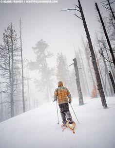 Snowshoeing Tilly Jane Trail, Mt. Hood