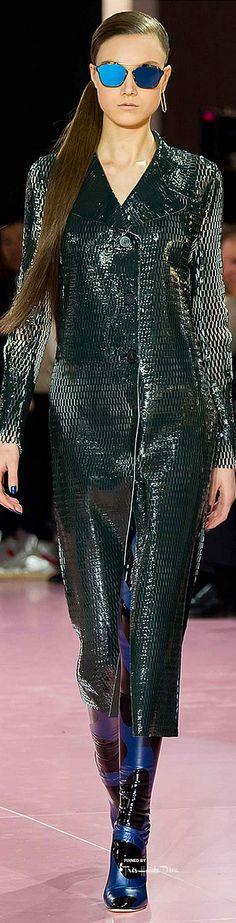 Christian Dior Fall 2015 RTW ♔THD♔