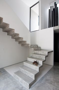 Image 12 of 34 from gallery of Garcias House / Warm Architects. Photograph by Wacho Espinosa