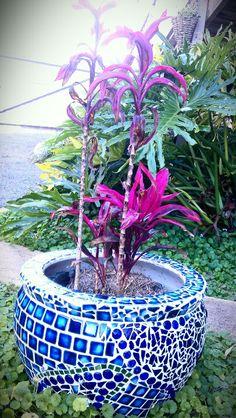 Blue mosaic pot planter. Love the tiles