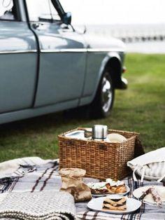 picnic, little blue deer