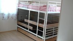Updating our habitat gallery, need photos of your fancy digs! Bunny Cages, Rabbit Cages, House Rabbit, Pet Rabbit, Diy Bunny Cage, Diy Bunny Toys, Indoor Rabbit Cage, Rabbit Information, Rabbit Habitat