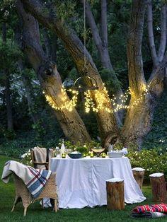 outdoor picnic: Interesting lighting idea for lights near trees.