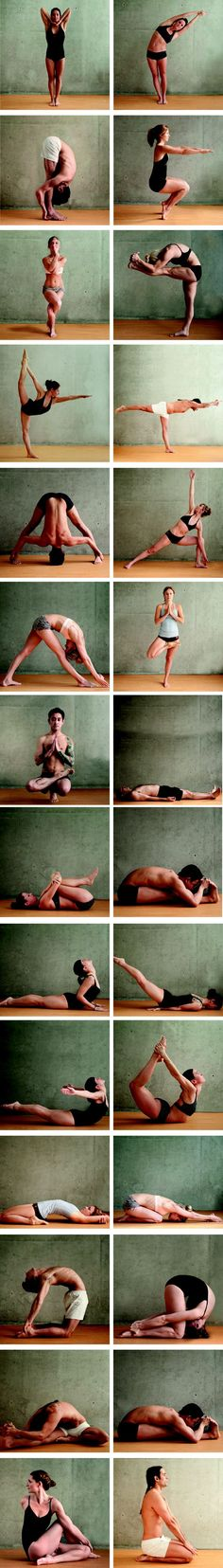 26 Bikram Yoga Poses #yoga #fitness   http://bikramyogavancouver.com/new-to-bikram-yoga-vancouver/26-bikram-yoga-poses/ More