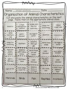ANIMAL CLASSIFICATION AND ANIMAL CHARACTERISTICS SORTS FREEBIE! - TeachersPayTeachers.com