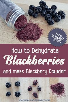 Berry season is short and sweet, so don't forget to stock up on more to make sure you can dehydrate blackberries and save them for snacking or to make blackberry powder! I'll show you how with this step by step tutorial. Dehydrated Vegetables, Dehydrated Food, Do It Yourself Food, Homemade Spices, Canning Recipes, Canning Tips, Dehydrator Recipes, Freeze Drying, Preserving Food