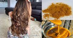 Seu CABELO CAI MUITO E NÃO CRESCE? Veja essa RECEITA CASEIRA! Aloe Vera, Shampoo, Hair Beauty, Lily, Long Hair Styles, 36, Portal, Hairstyles, Craft