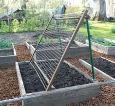 cucumber trellis...for our garden this summer!