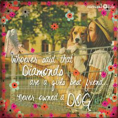 Whoever said Diamonds are a girls best friend never owned a dog.