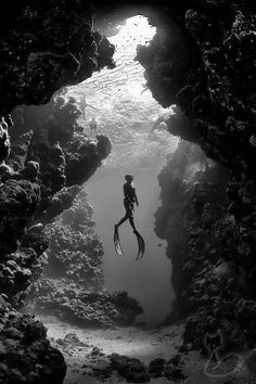black and white underwater shot