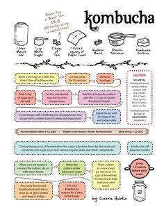 Kombucha Instructions How To Kombucha Benefits, How To Brew Kombucha, Kombucha Recipe, Kombucha Tea, Kombucha Flavors, Kimchi, Kombucha Culture, Probiotic Drinks, Kefir Recipes