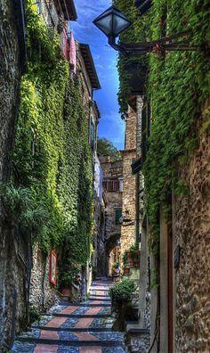 """""""Quasi in cima a via Castello, Imperia"""": Liguria, Italy (en la lente del fotógrafo Roberta Sala)."""