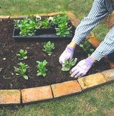 AΠENANTI OXΘH: Σχεδιασμός λαχανόκηπου