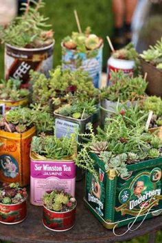 Vintage flowerpot tins