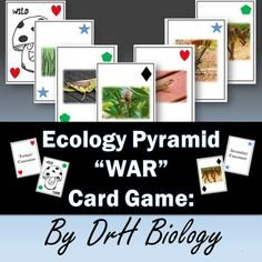 Description: Students use these cards to play War as they learn about ecological pyramid. It includes words and pictures for producers, primary-secondary and tertiary consumers. This is also available in myBiology EOC Interdependence within Environmental Systems (Category 5) Packet.The students will get very competitive todefend theirpositions!Great for science centers or early finishers!