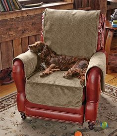 Our popular Grip-Tight dog couch protector now comes perfectly sized for your favorite chair.