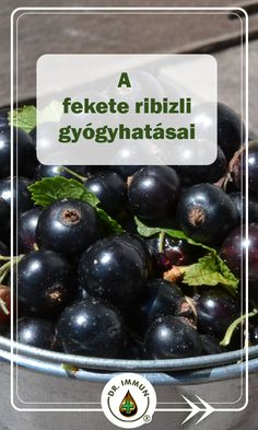 Medicinal Plants, Doterra, The Cure, Tea, Fruit, Food, High Tea, Meal, Essen