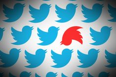 The SA Human Rights Commission on Monday urged the public to use social networking sites responsibly Twitter Tips, It Works, Social Media, Messages, News, Trevor Noah, Human Rights, Cliff, Voici