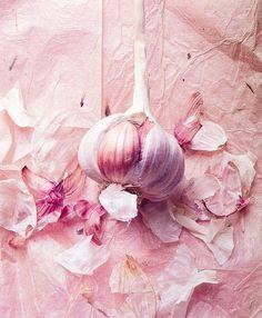 pink garlic /