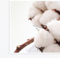 Future of Global Cotton Production, Demand and Prices till 2020 Textile Market, Textile Industry, Textiles, Future, Cotton, Future Tense, Fabrics, Textile Art