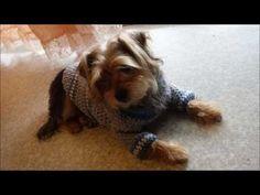 En este tutorial te enseño paso a paso una forma en la que puedes hacer un suéter para perros que usando tejidos y matizados básicos, queda precioso.