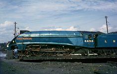 Steam Engine 1967