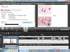▶ Connective Tissue Part 2 - YouTube