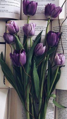 Herbs purple tulips tulips aesthetic tulipas para lamparas re Frühling Wallpaper, Beste Iphone Wallpaper, Flower Phone Wallpaper, Iphone Background Wallpaper, Purple Wallpaper, Purple Tulips, Tulips Flowers, My Flower, Pretty Flowers