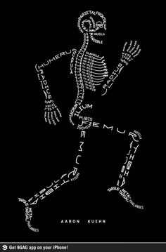 A good way to remember the names of the bones--nice visual for the science classroom