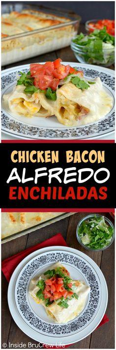 Chicken Bacon Alfredo Enchiladas - tortillas filled with chicken and bacon and topped with Alfredo and cheese. Easy dinner recipe for busy nights!