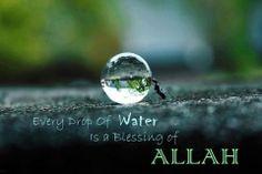La création d'Allah est une Miséricorde. <3