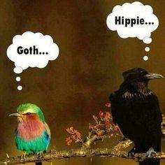 ☮ American Hippie ☮ Hippie and Goth