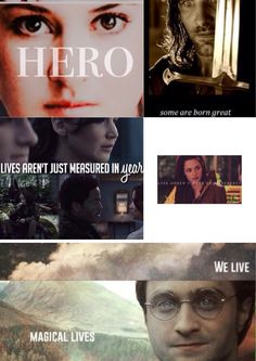 Divergent/Lord Of The Rings/Hunger Games/Twilight/ Harry Potter