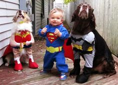 10 Adorable Pets in Costume #halloween2012