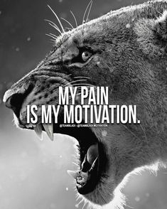 Smart Muscle ABS Stimulator Being sore means that your workout works .-Smart Muscle ABS Stimulator Being sore means your workout is working! Lion Quotes, War Quotes, Wisdom Quotes, Success Quotes, Yoda Quotes, Joker Quotes, Happiness Quotes, Success Mindset, Deep Quotes