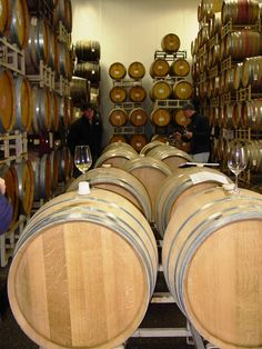 The barrel cellar in Dan Goldfield's and Steve Dutton's partnership, created in 1998, called Dutton Goldfield Winery, Sebastopol, California.