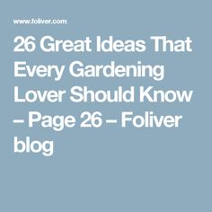 26 Great Ideas That Every Gardening Lover Should Know – Page 26 – Foliver blog