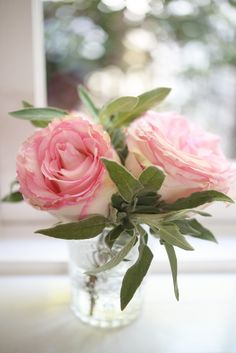 Dusty pink rose and sage mini arrangement. Love the idea of adding fresh herbs to floral arrangements. Adds a little scent to the mix! Small Flowers, My Flower, Fresh Flowers, Pink Flowers, Beautiful Flowers, Cactus Flower, Exotic Flowers, Yellow Roses, Pink Lace