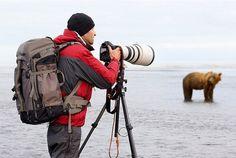 wildlife photographer - Google Search