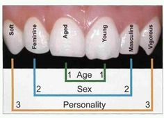 The shape of your teeth can tell alot about you!!