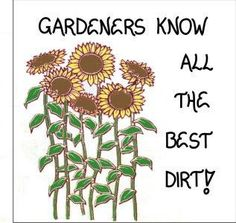 Gardening Magnet - Gardener Quote, Humorous garden saying, Yellow Sunflowers