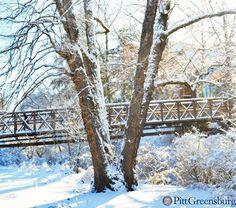 The bridge over Slate Run Creek.  #H2P #Winter #Pitt #Pennsylvania #College #Snow