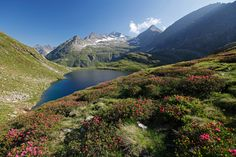 Bergwelt Schladming Dachstein Green Earth, I Want To Travel, Central Europe, The Republic, You Are Awesome, Capital City, All Over The World, Austria, Adventure