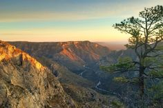 e378ac7c9289a8 Rambling Hemlock  McKittrick Ridge in the Guadalupe Mountains Guadalupe  Mountains National Park