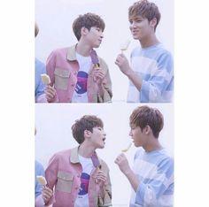 Meanie couple. Mingyu and Wonwoo